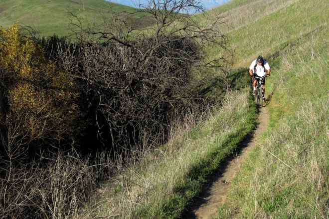 "Joe riding on ""Bovinian Delight"" Trail"